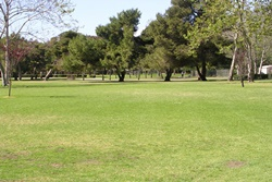 dog park in huntington beach